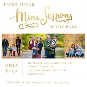 calgary family photography mini sessions
