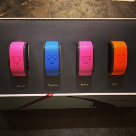walt disney world magic bandswalt disney world magic bands