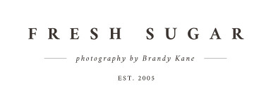 Fresh Sugar – photography by Brandy Kane logo